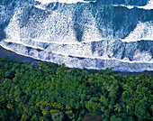 Aerial view of the palm-covered coast of Costa Rica, waves at the sea