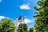 The Electoral Castle on the Rhine, Eltville, Rheingau, Hesse, Germany