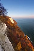 Blick zum Königsstuhl, Nationalpark Jasmund, Rügen, Ostsee, Mecklenburg-Vorpommern, Deutschland