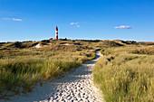 Weg zum Strand, Leuchtturm, Amrum, Nordsee, Schleswig-Holstein, Deutschland