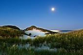Full moon, Kniepsand, Amrum, North Sea, Schleswig-Holstein, Germany