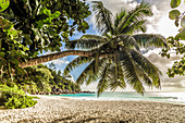 Anse Georgette beach on the island Praslin Seychelles