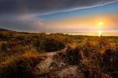 Dünenlandschaft bei Sonnenuntergang am Ostseestrand von Darß, Mecklenburg-Vorpommern