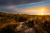 Dune landscape on the Baltic Sea beach on the Darß in the evening mood. High shore, Ahrenshoop, Fischland-Darß-Zingst, National Park - Vorpommersche Boddenlandschaft, Mechlenburg Vorpommern, Germany, Europe