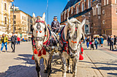 Horse drawn carriage in the main square, Rynek Glowny, in the medieval old town, UNESCO World site, in Krakow, Poland, Europe.
