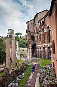 Theatre of Marcellus right, ruins of Temple of Apollo Sosiano, UNESCO World Heritage Site, Rome, Lazio, Italy, Europe