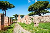 Cardo Maximus, Ostia Antica archaeological site, Ostia, Rome province, Lazio, Italy, Europe