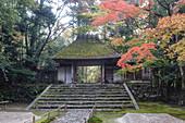 Herbstfarbe im Honen-in Tempel, ein buddhistischer Tempel gelegen auf dem Weg des Philosophen, Kyoto, Japan, Asien