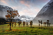 Ahornboden bei Sonnenaufgang im Herbst, Eng, Karwendel, Tirol, Österreich