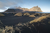 Grass growing on black sandy beach with†Vestrahorn mountain in background, Iceland