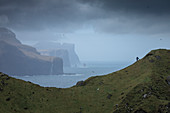 Majestic natural scenery with coastal cliffs under dramatic sky, Kalsoy, Faroe Islands