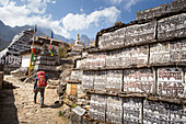 A trekker is walking past a big wall of Mani stones, with Buddhist prayer inscriptions. The trek to Everest Base Camp (EBC) is possibly the most dramatic and picturesque in the Nepalese Himalaya. Not only will you stand face to face with Mount Everest, Sagarmatha in Nepali language, at 8,848 m (29,029 ft), but you will be following in the footsteps of great mountaineers like Edmund Hillary and Tenzing Norgay. The trek is scenic and offers ever-changing Himalayan scenery through forests, hills and quaint villages. A great sense of anticipation builds as you trek up the Khumbu Valley, passing th