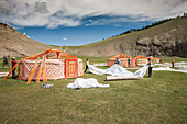 Mongol people at Lapis Sky Camp dismantling ger (yurt) camp at end of Summer Trip of 2017, Bunkhan, Bulgan, Mongolia