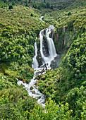 Waipunga Falls, Hawke's Bay, Nordinsel, Neuseeland, Ozeanien