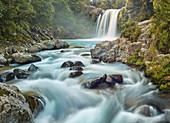 Tawhai Falls, Tongariro Nationalpark, Manawatu-Wanganui, Nordinsel, Neuseeland, Ozeanien