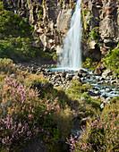 Taranaki Falls, Wairere Stream, Tongariro Nationalpark, Manawatu-Wanganui, Nordinsel, Neuseeland, Ozeanien