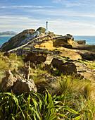 Castle Point Lighthouse, Sandstone, Wellington, North Island, New Zealand, Oceania