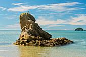 Wainui Inlet, Abel Tasman Nationalpark, Tasman, Südinsel, Neuseeland, Ozeanien