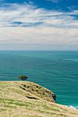 Decanter Bay, Banks Peninsula, Canterbury, Südinsel, Neuseeland, Ozeanien