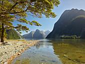 Milford Sound, Fiordland Nationalpark, Southland, Südinsel, Neuseeland, Ozeanien
