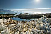 Felsformationen auf der Kaikoura Peninsula, Canterbury, Südinsel, Neuseeland, Ozeanien