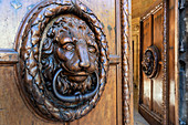 Entrance gate with lions at the city hall of Aix en Provence
