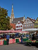 Markt und Frauenkirche in Esslingen, Baden-Württemberg, Deutschland