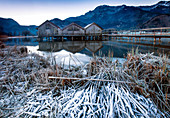 Three wooden huts with jetty standing in the Kochelsee, in the foreground the lake shore with frozen reeds, in the background snow-capped mountains, was taken at sunset in winter, Schlehdorf, Voralpenland, Bavaria, Germany