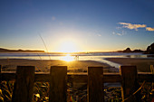 Couple with dog walking on idyllic ocean beach at sunset, Tofino, British Columbia, Canada,