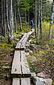 Woman hiking on boardwalk through forest