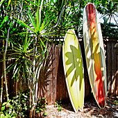 Surfboards Leaning Against a Fence,Bradenton, Florida, USA