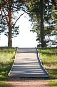 Wooden Footpath Through a Park, Estonia