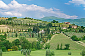 View of rolling green landscape, Tuscany, Italy