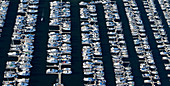 Aerial View of Yachts in a Marina, Seattle, Washington, US