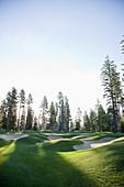 Trees surrounding golf course with sandtraps, Cle Elum, Washington, USA