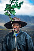 Cape Verde, Island Fogo, NationalPark Fogo, Village Cha,landscape, Active Vulcano, Lavafields, coffee, wineyards, wine,farmers, working the land, planting wine ranks, portrait