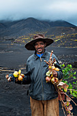 Cape Verde, Island Fogo, NationalPark Fogo, Village Cha,landscape, Active Vulcano, Lavafields, coffee, wineyards, wine,farmers, working the land, planting wine ranks,food