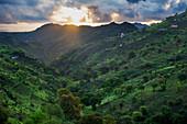 Cape Verde, Island Santiago, rain season ,green valley