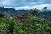 Cape Verde, Island Santiago, rain season , mountains,