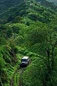 Geländewagen auf einer Straße im grünen Hinterland der Insel Santiago, Kap Verde
