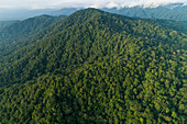Berge und Chocó Regenwald, Nationalpark Utria, Kolumbien