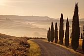 Umgebung, Pienza, Toskana, Italien, Europa