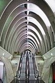 Liege-Guillemins railway station, architect Santiago Calatrava, Liege, Belgium, Europe