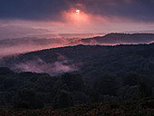 Breaking through cloud, the sun adds a pink hue to heavy mist over Yarner Wood, Dartmoor National Park, Bovey Tracey, Devon, England, United Kingdom, Europe