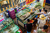 An aerial view of a live fish stall at the indoor Banzaan food market in Patong, Phuket, Thailand, Southeast Asia, Asia