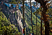 View to monastery Monastery Taktshang or Taktsang or Tigernest in a rock wall with trees and prayer flags, Buddhist monastery in the Parotal, Bhutan, Himalayas, Asia
