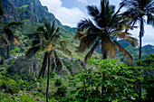 Cape Verde, San Antao Island,  green mountains, palm trees