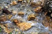 Creek near Colfosco, Alta Badia, Dolomites, South Tyrol, Italy