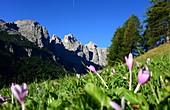 at Colfosco, Alta Badia, Dolomites, South Tyrol, Italy