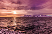 Sunset and a scenic view of the glacial ice and floating icebergs in Antarctica, Polar Regions